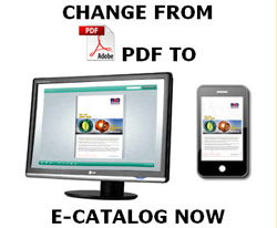 CHANGE FROM PDF TO ECATALOG NOW